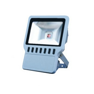 Светодиодные прожекторы LU-100W-1