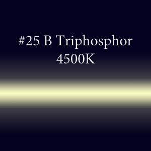 Неоновая трубка с люминофором #25B Triphosphor 12мм