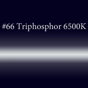 Неоновая трубка с люминофором #66 Triphosphor 6500K  TL 8мм