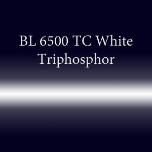 Трубка неоновая с люминофором BL 6500 TC White Triphosphor