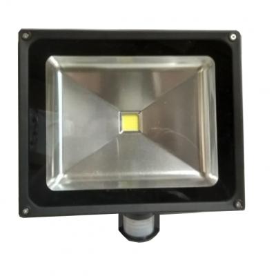 Светодиодный прожектор RN-HP50W-1, 50Вт, IP65, с датчиком движения