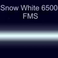 Неоновые трубки с люминофором Snow White 6500 FMS 15мм