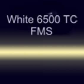 Неоновые трубки с люминофором White 6500 ТС FMS